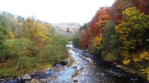 Allen Gorge near Hexham not far from Willow View Cottage